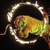 Цирки в Крымске